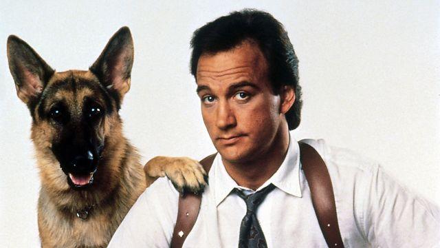 Фильм к 9 собачья работа смотреть онлайн бесплатно в хорошем качестве приветственный бонус за регистрация форекс